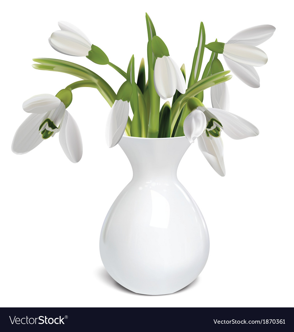 Bouquet of snowdrops in a vase vector | Price: 1 Credit (USD $1)