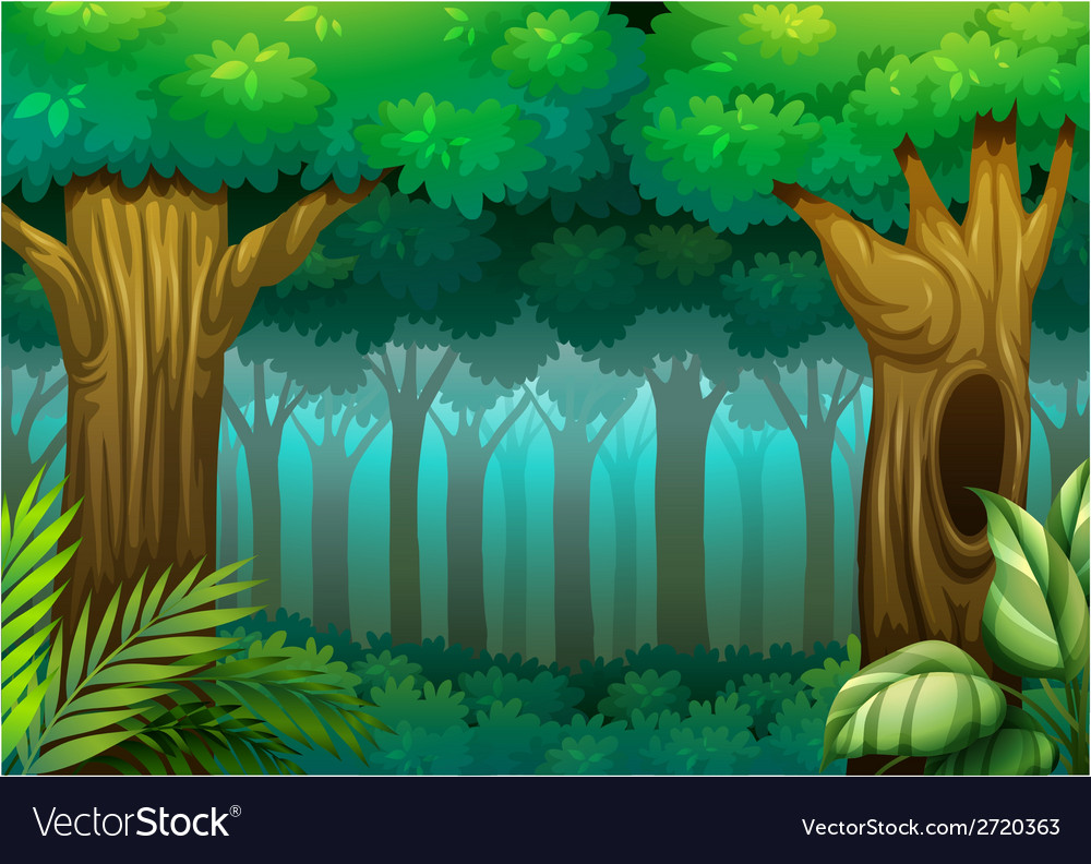 Deep forest vector | Price: 1 Credit (USD $1)