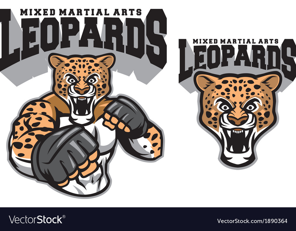 Mma fighter leopard vector | Price: 3 Credit (USD $3)