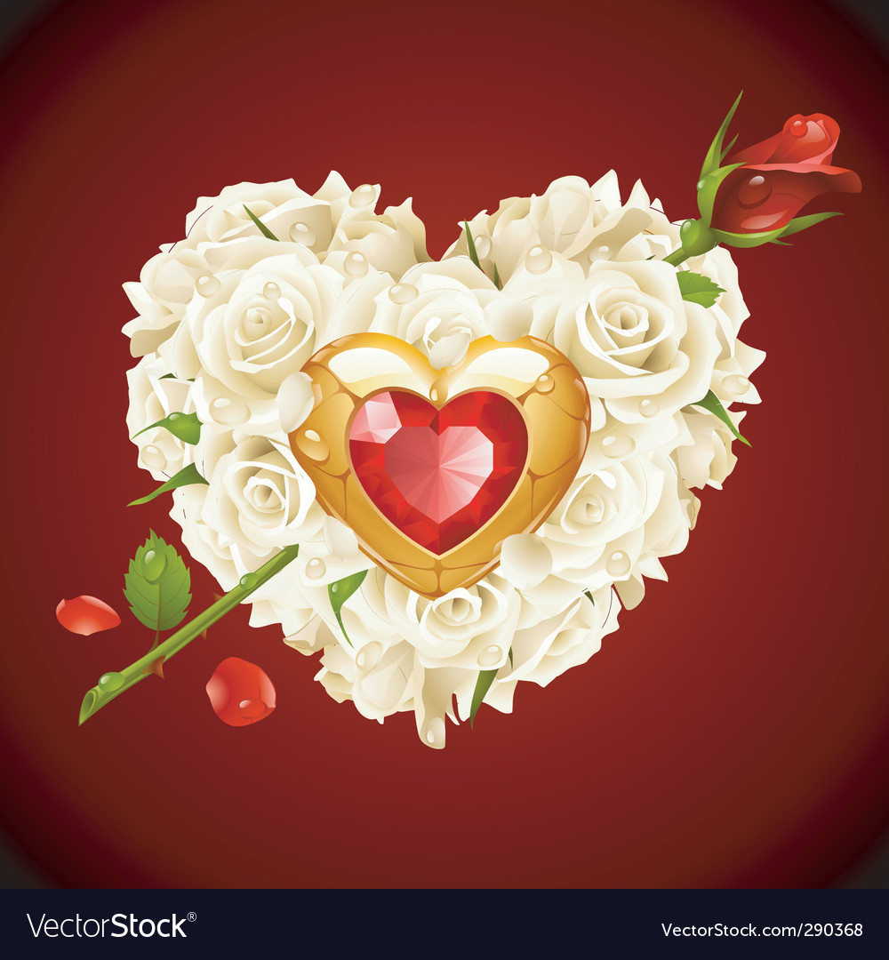 White roses vector | Price: 3 Credit (USD $3)