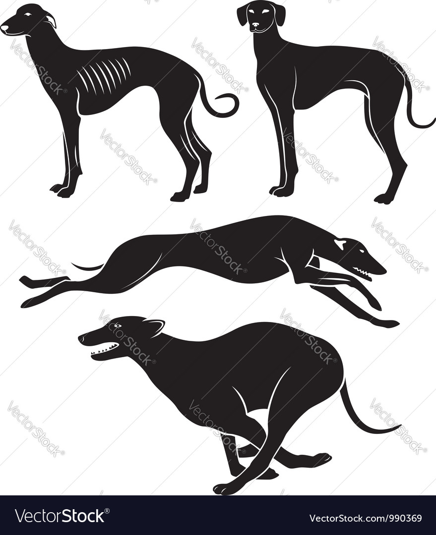 Hounds vector | Price: 1 Credit (USD $1)