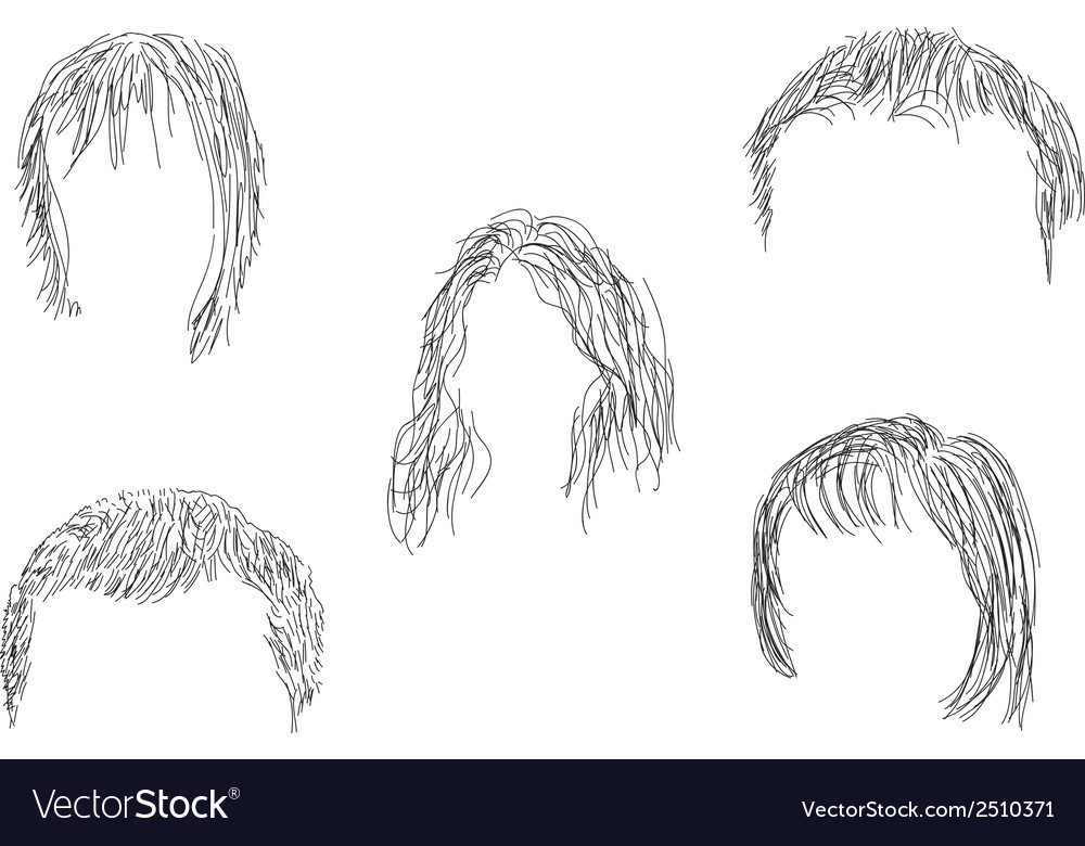 Hair wig vector | Price: 1 Credit (USD $1)