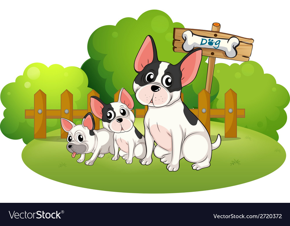 A backyard with three bulldogs vector | Price: 1 Credit (USD $1)