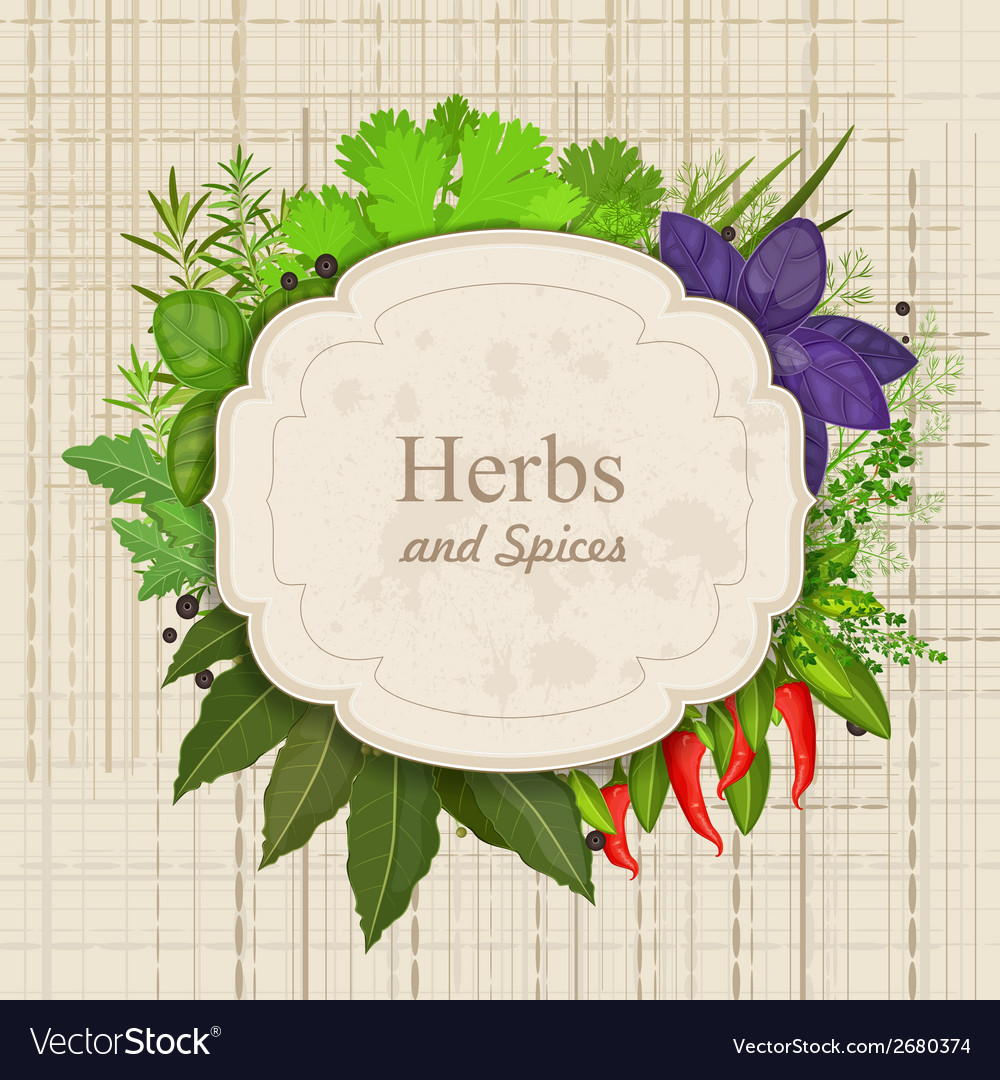 Vintage card with herbs and spices on canva vector | Price: 1 Credit (USD $1)