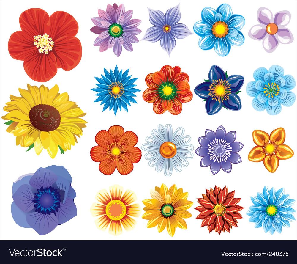 Flower set vector   Price: 1 Credit (USD $1)