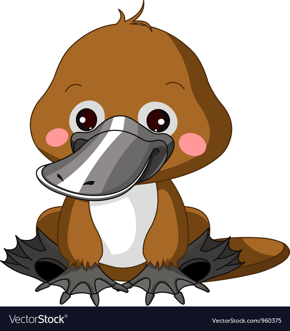 Fun zoo platypus vector | Price: 3 Credit (USD $3)