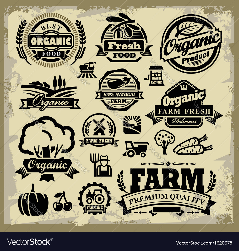 Organic harvest labels vector | Price: 1 Credit (USD $1)