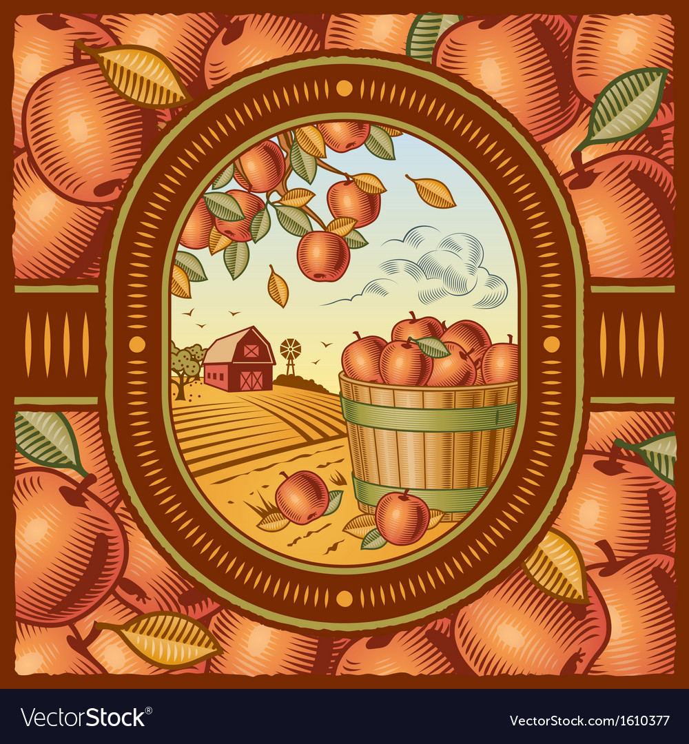 Apple harvest vector | Price: 3 Credit (USD $3)
