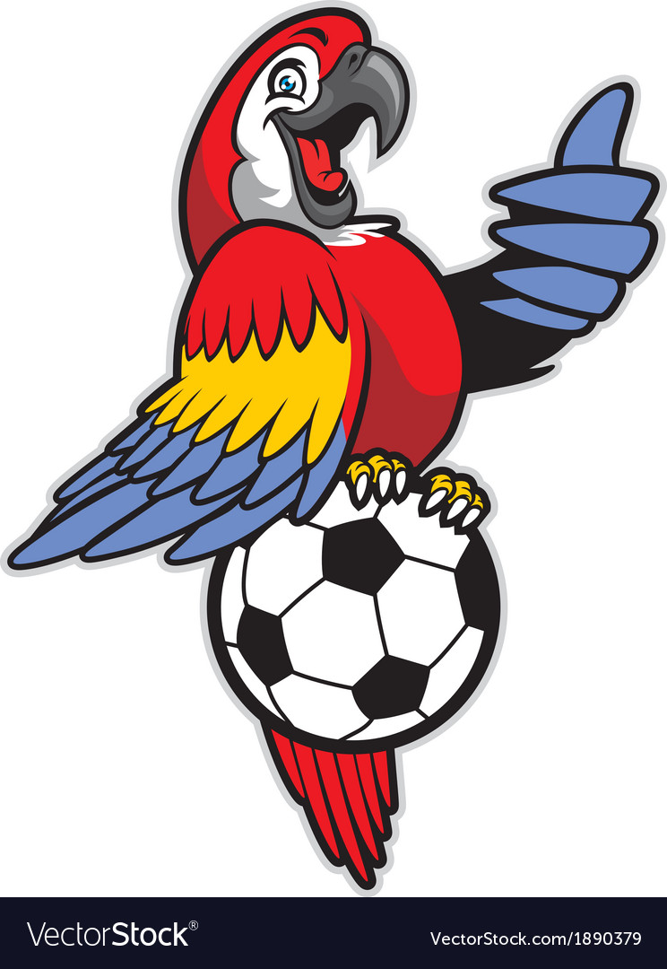 Red macaw bird stand over the soccer ball vector | Price: 3 Credit (USD $3)