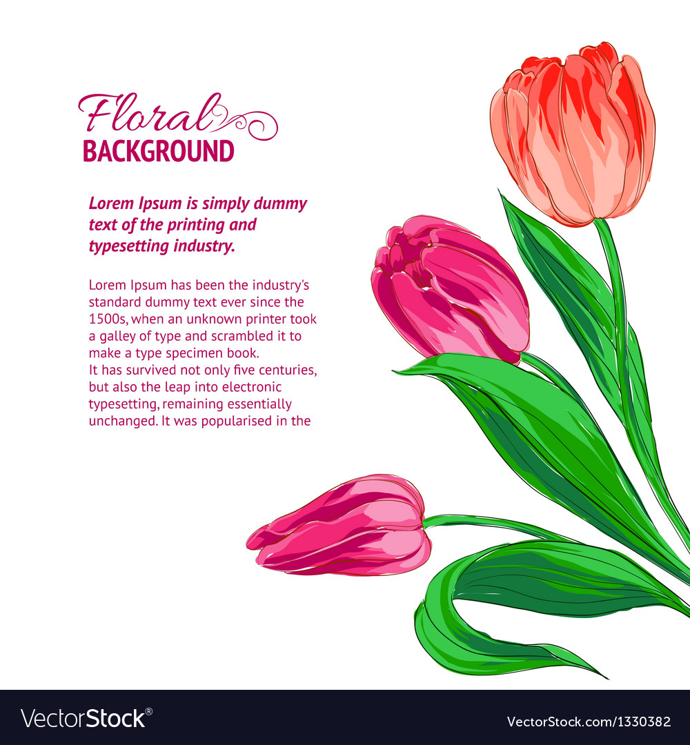 Red tulips and sample text vector | Price: 3 Credit (USD $3)