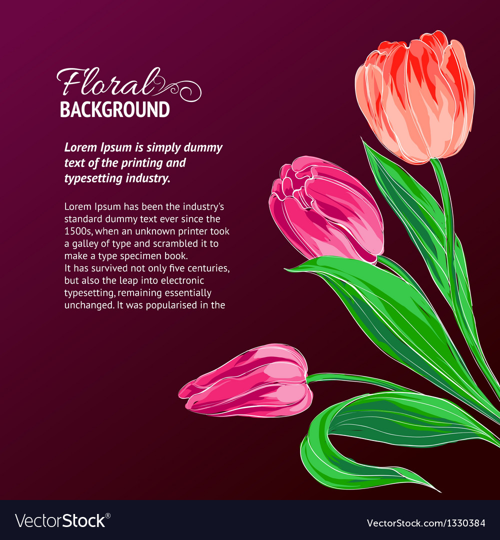 Red tulips and text place vector | Price: 3 Credit (USD $3)