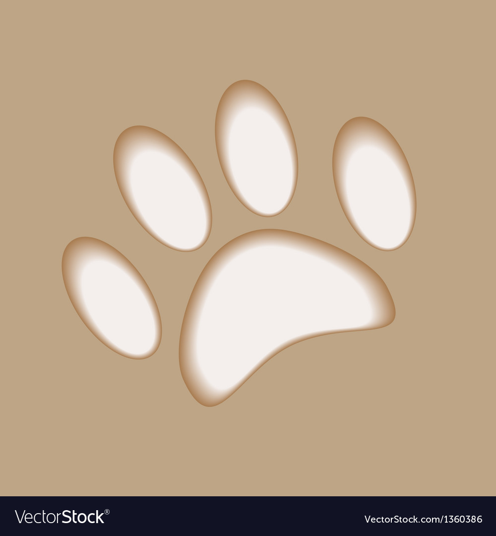 Realistic animal foot applique cut paper with soft vector | Price: 1 Credit (USD $1)