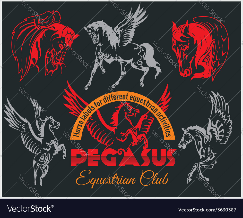 Pegasus and horses vintage labels badges vector | Price: 1 Credit (USD $1)