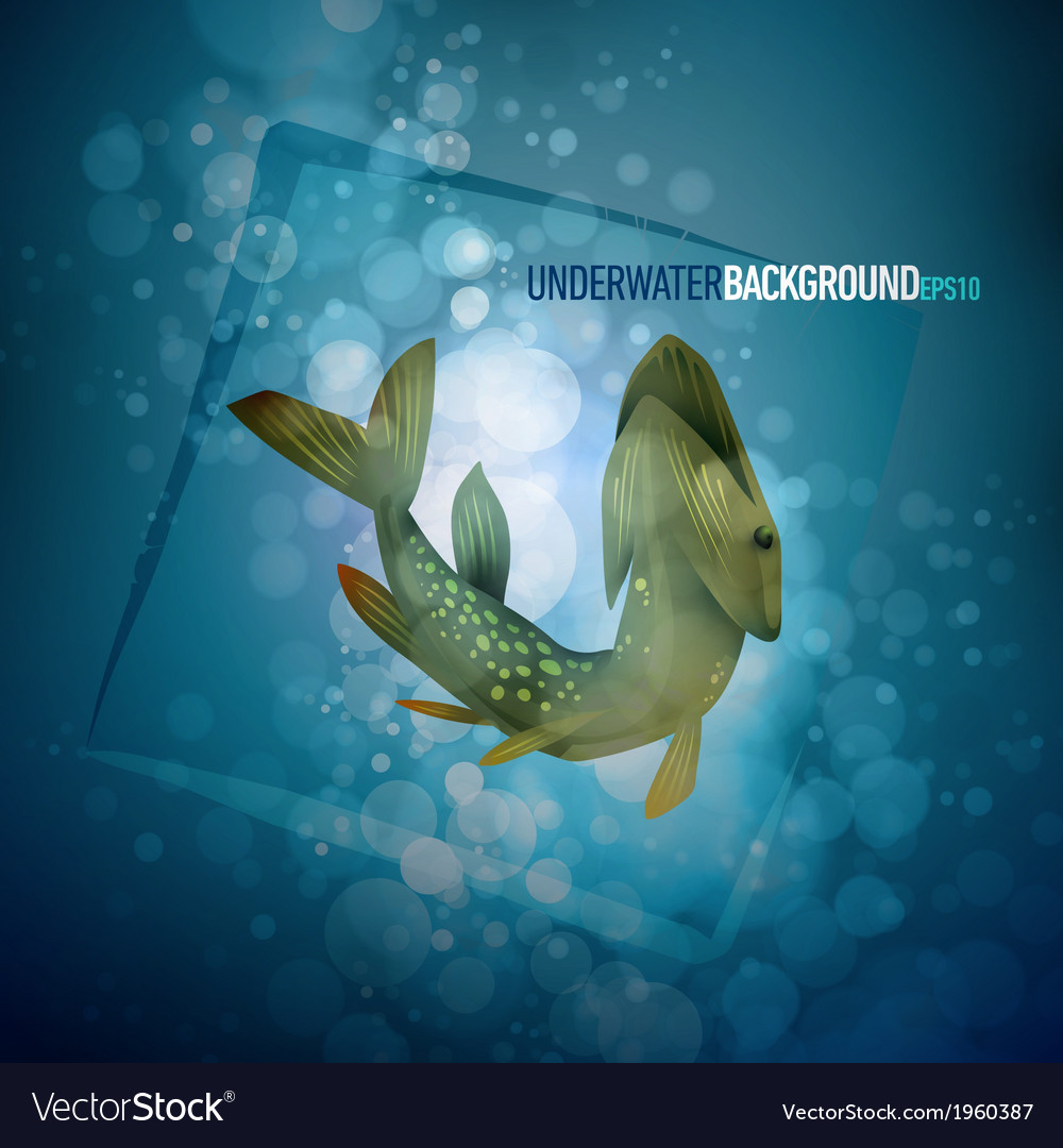 Pike capture underwater background vector | Price: 1 Credit (USD $1)