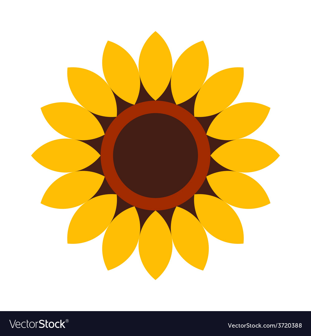 Sunflower  flower icon vector