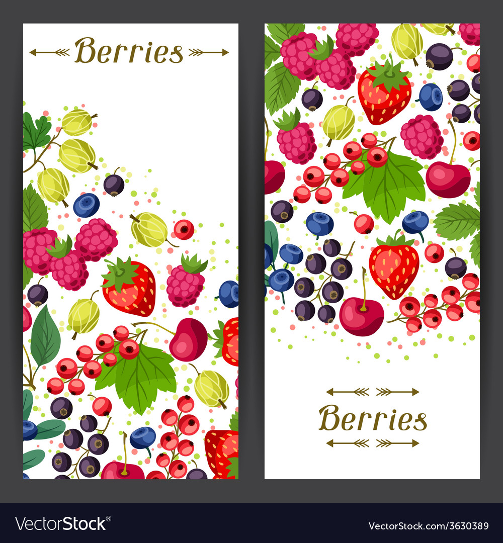 Nature banners design with berries vector | Price: 1 Credit (USD $1)