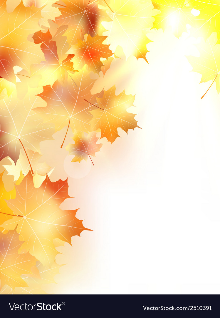 Autumn background with leaves plus eps10 vector | Price: 1 Credit (USD $1)