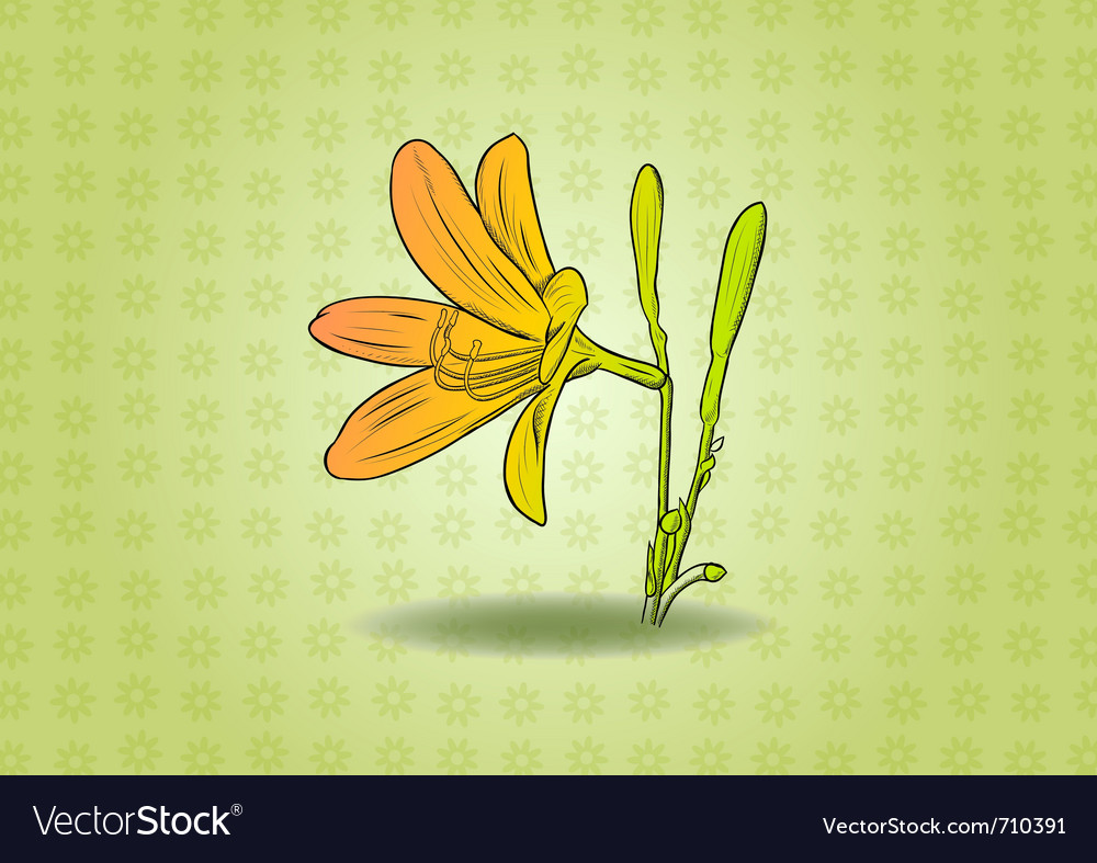 Flower on the green background vector | Price: 1 Credit (USD $1)