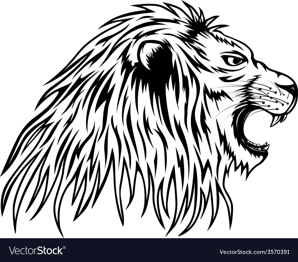 Lion roars vector | Price: 1 Credit (USD $1)