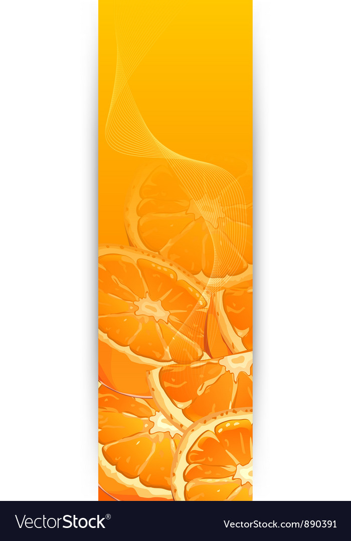 Orange flyer 10 vector | Price: 3 Credit (USD $3)
