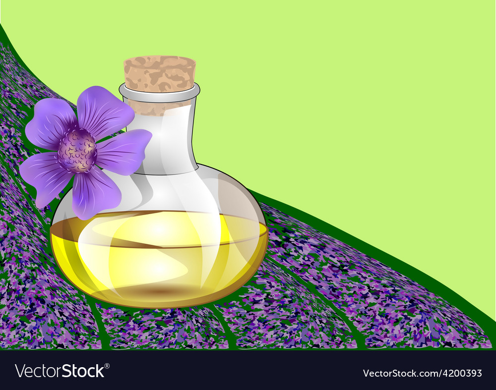 Lavender oil vector | Price: 1 Credit (USD $1)