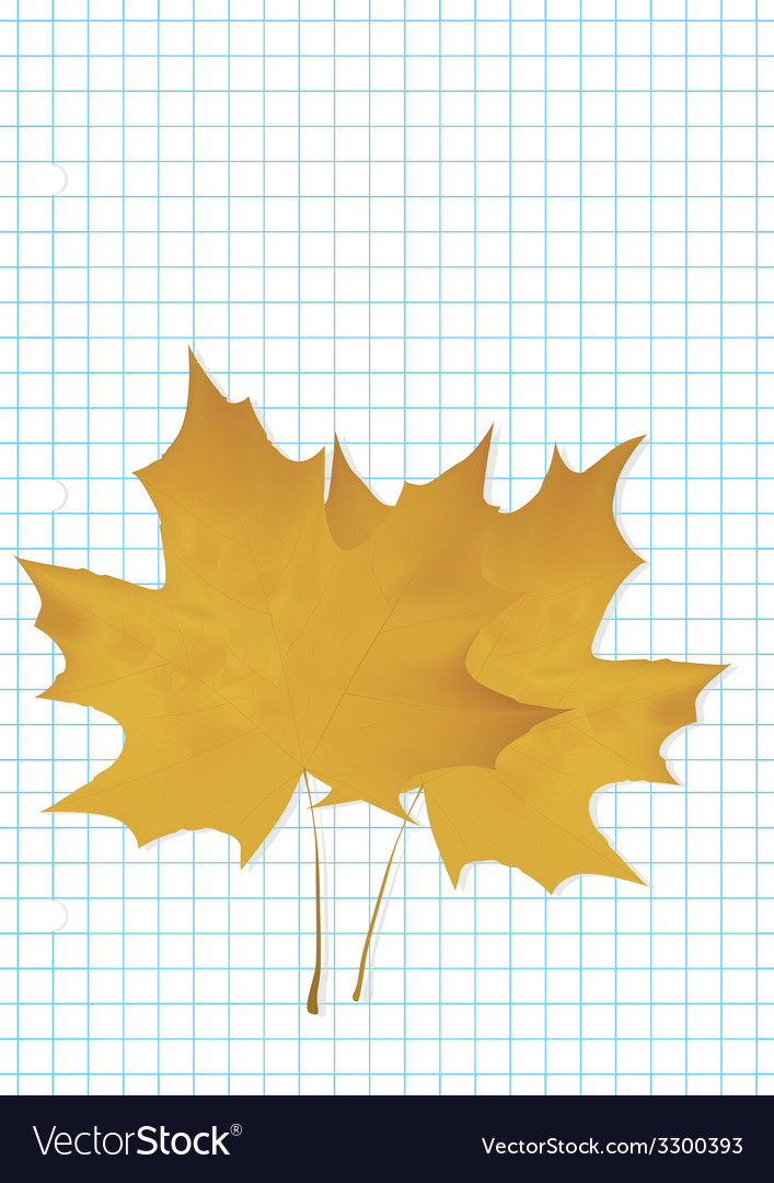 The maple leaf lies on a notebook vector | Price: 1 Credit (USD $1)