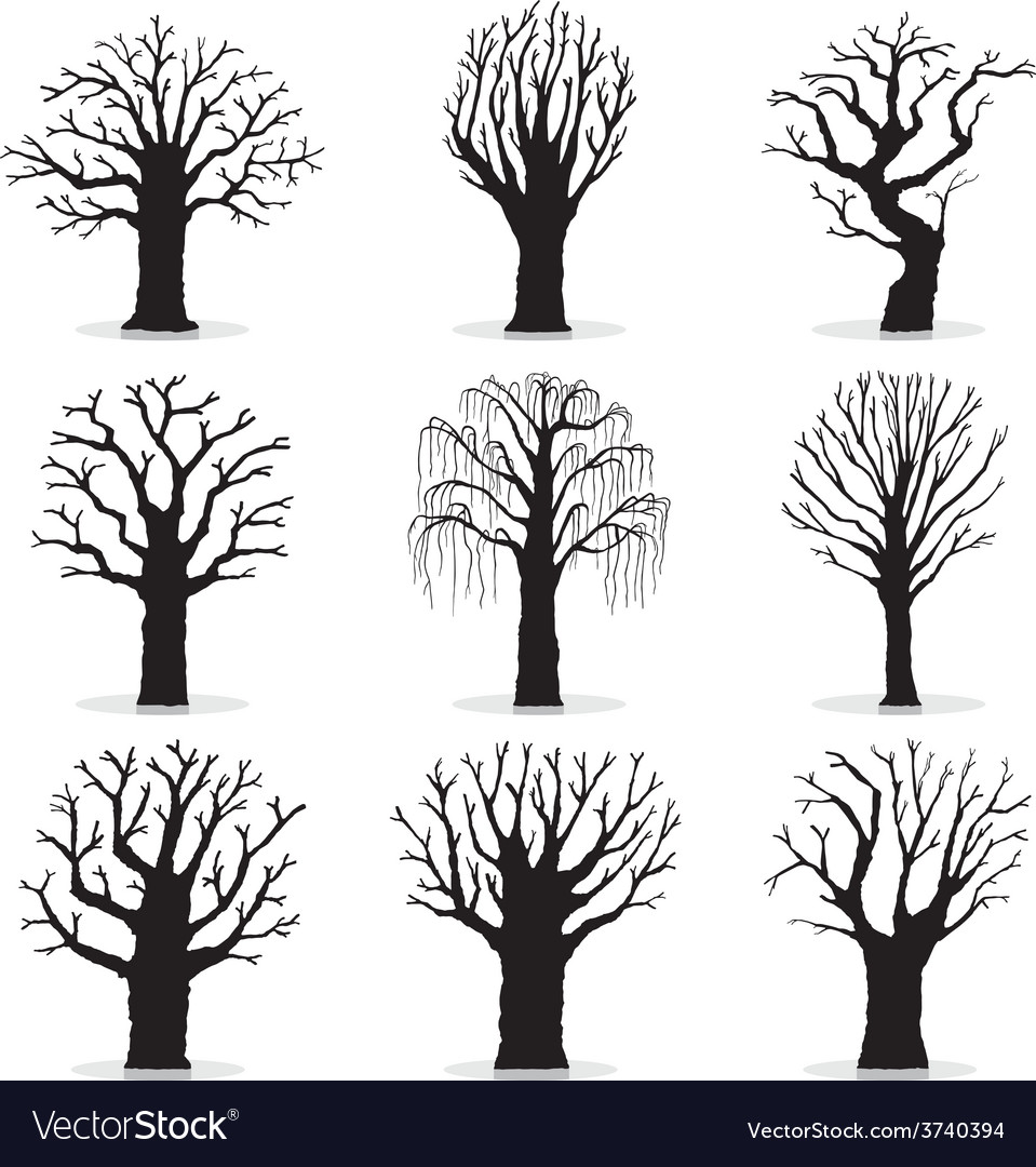 Collection of trees silhouettes vector | Price: 1 Credit (USD $1)