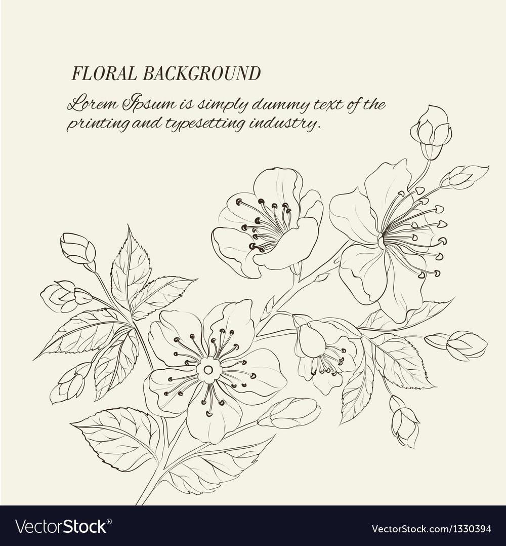 Scatch of spring sakura vector | Price: 1 Credit (USD $1)
