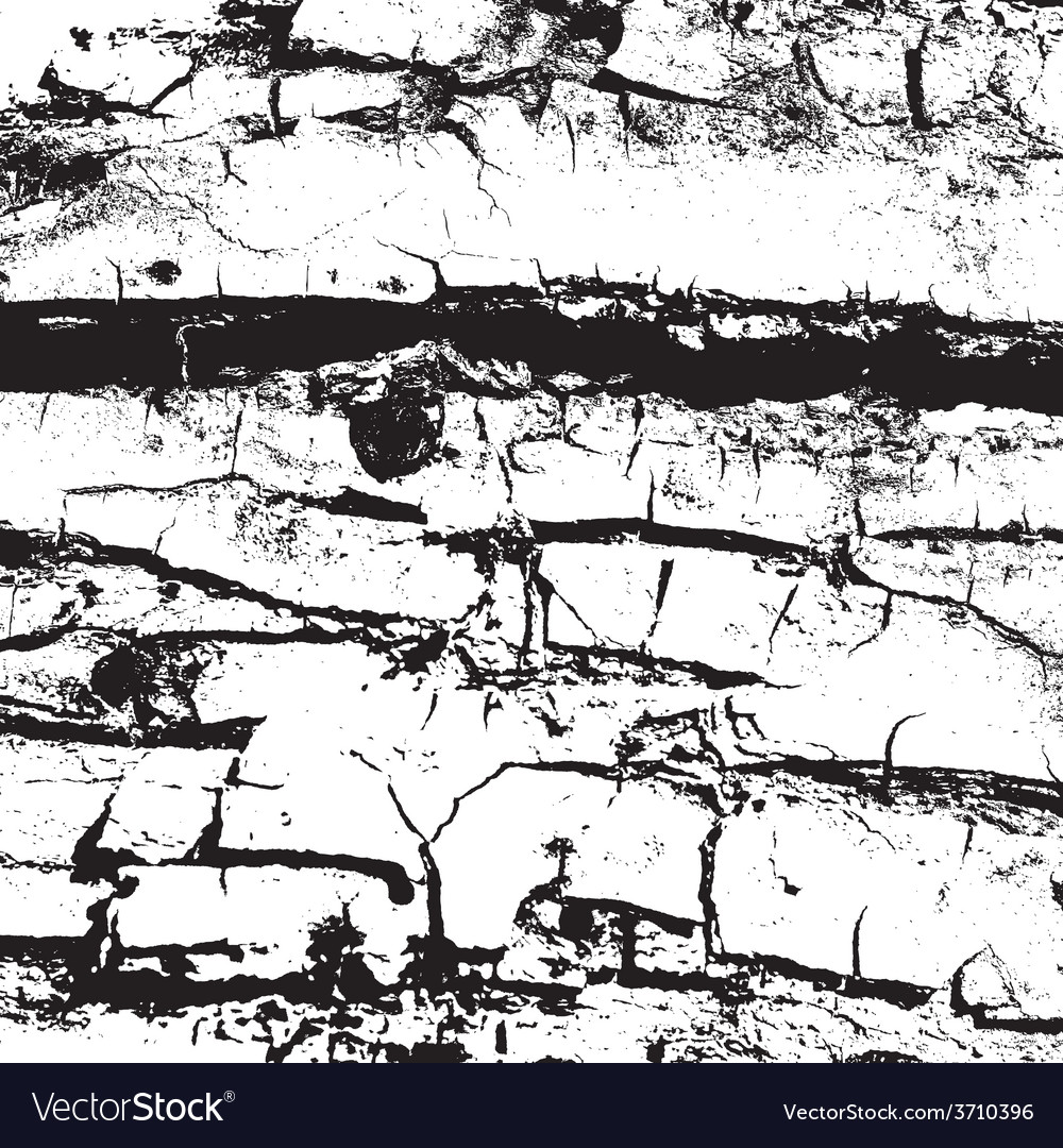 Bark vector | Price: 1 Credit (USD $1)