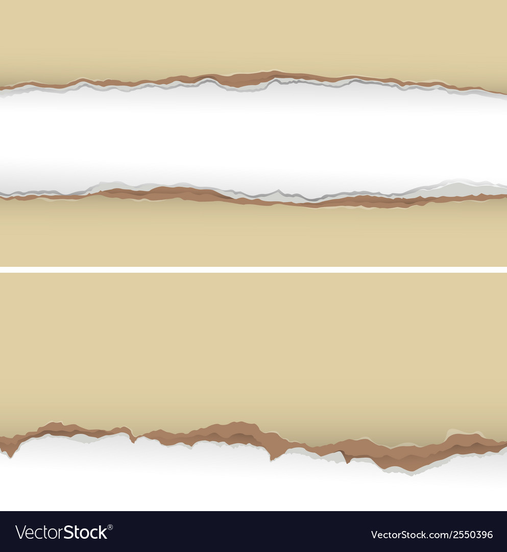 Torn paper background vector   Price: 1 Credit (USD $1)