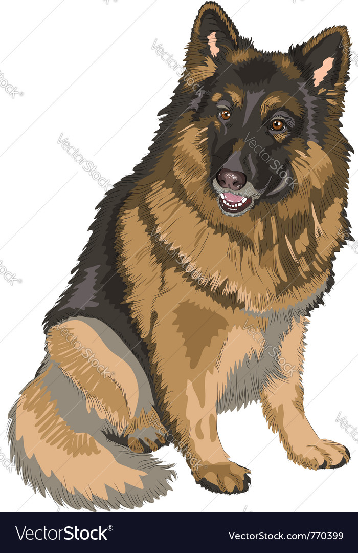 German shepherd breed vector | Price: 1 Credit (USD $1)