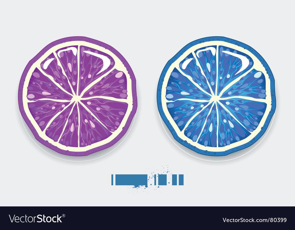Lemon lime vector | Price: 1 Credit (USD $1)