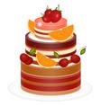 Chocolate berry cake vector