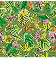 Pattern of hand draw leafs vector