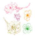Flowers isolated vector