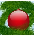Background christmas ball and spruce tree vector