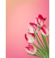 Pink and white tulip with green leaves eps 8 vector
