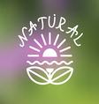 Floral emblem on blurred background vector