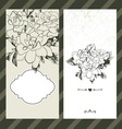 Set of invitations with floral background vector