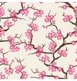 Cherry blossom seamless flowers pattern vector