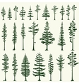 Set of stylized pine silhouettes vector