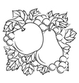 Fruits decoration with apple pear and grape vector