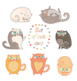 Seven of cute cats vector