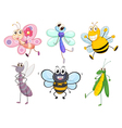 Flying insects vector