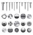 Set screws nails vector