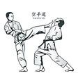 Karate fight vector