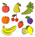 Fruits collection vector