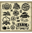 Organic harvest labels vector