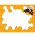 Bees and honeycomb with honey vector