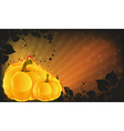 Burning pumpkins on radiant background vector